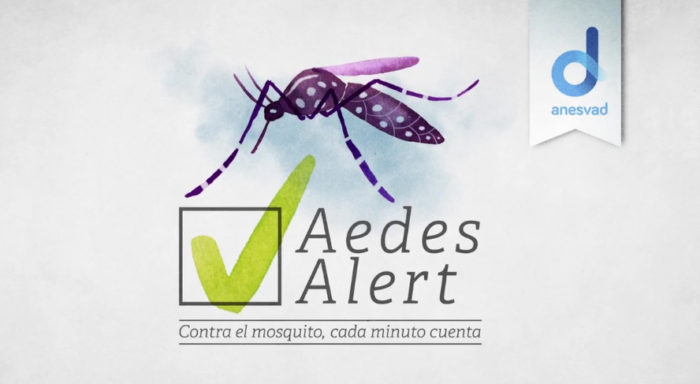 Aedes video